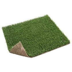Advance Verde
